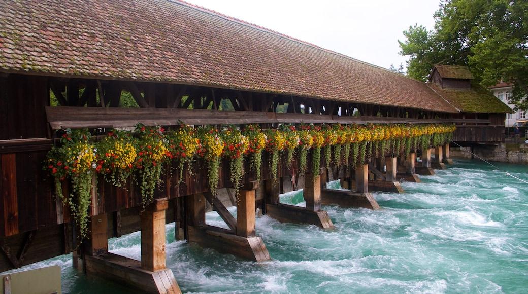 Bern featuring a bridge
