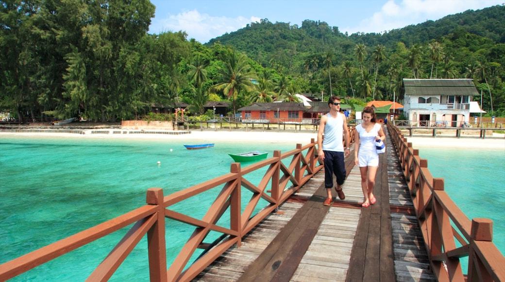 Johor showing a beach, rainforest and a bridge