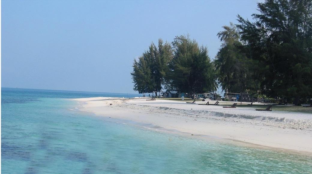 Johor showing a beach