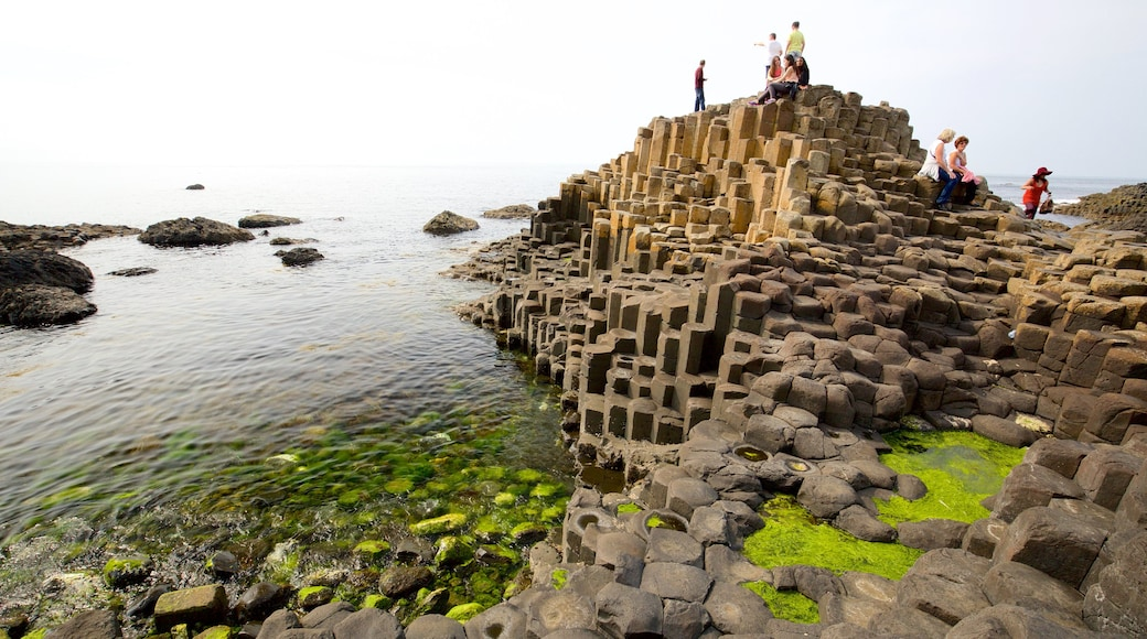 Giant\'s Causeway featuring a monument, heritage elements and general coastal views