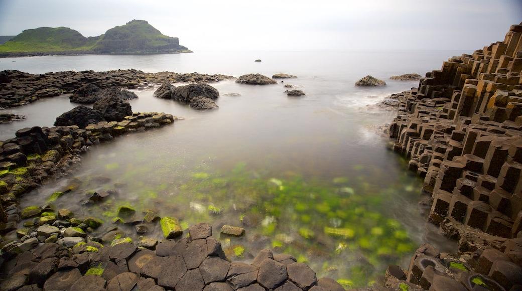 Giant\'s Causeway mostrando un monumento, elementos del patrimonio y vistas generales de la costa