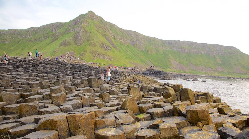 Giant\'s Causeway que incluye un monumento, vistas generales de la costa y elementos del patrimonio