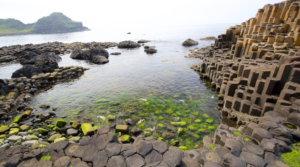 Giant\'s Causeway which includes general coastal views, heritage elements and rugged coastline