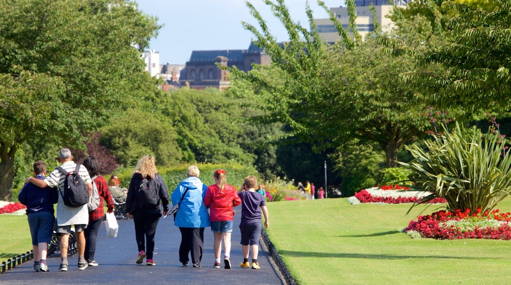 Phoenix Park showing a garden and flowers as well as a small group of people