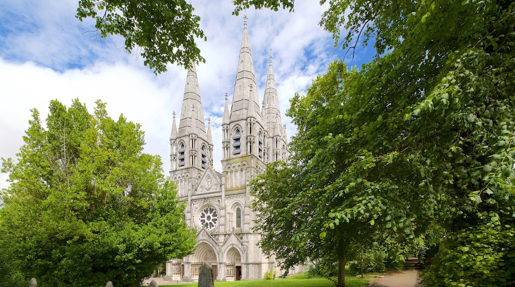 St. Finbarr\'s Cathedral which includes religious aspects, a church or cathedral and heritage architecture