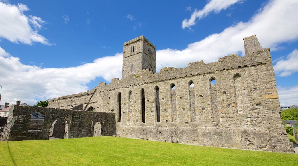 Abbaye de Sligo mettant en vedette patrimoine architectural, bâtiments en ruines et patrimoine historique