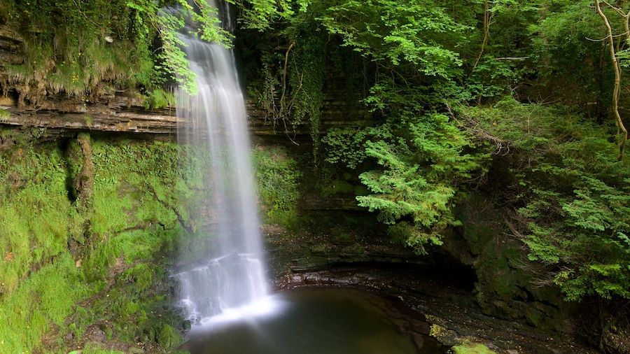 Glencar Waterfall featuring a cascade, a lake or waterhole and forest scenes