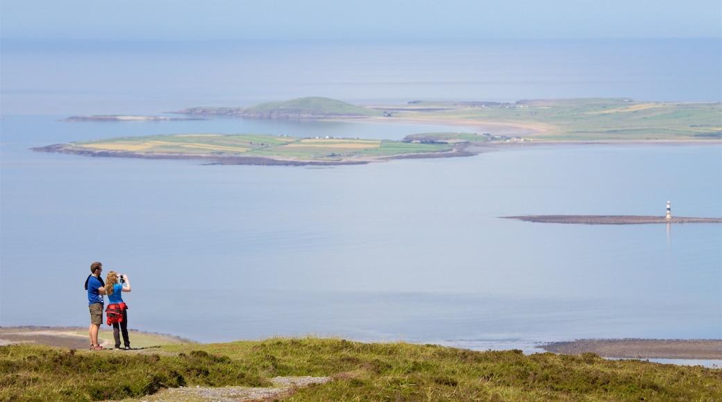 Knocknarea showing general coastal views as well as a couple