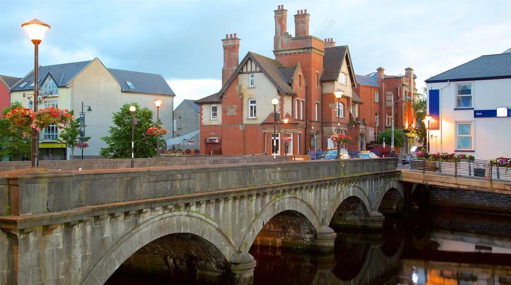 Sligo qui includes patrimoine architectural, patrimoine historique et ville
