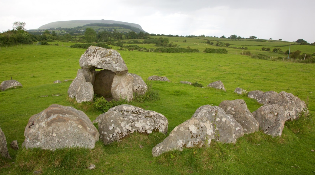 Carrowmore Megalithic Cemetery featuring heritage elements, tranquil scenes and a cemetery