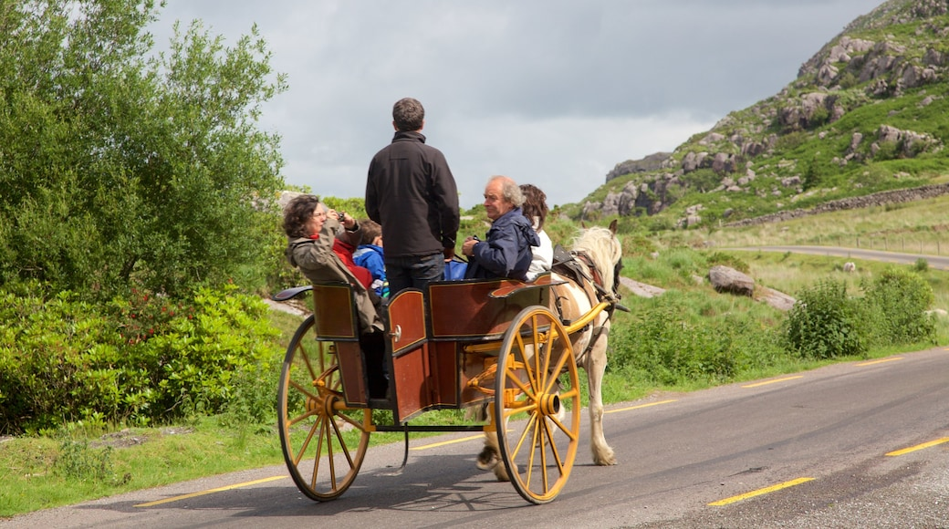 Killarney which includes horse riding as well as a small group of people