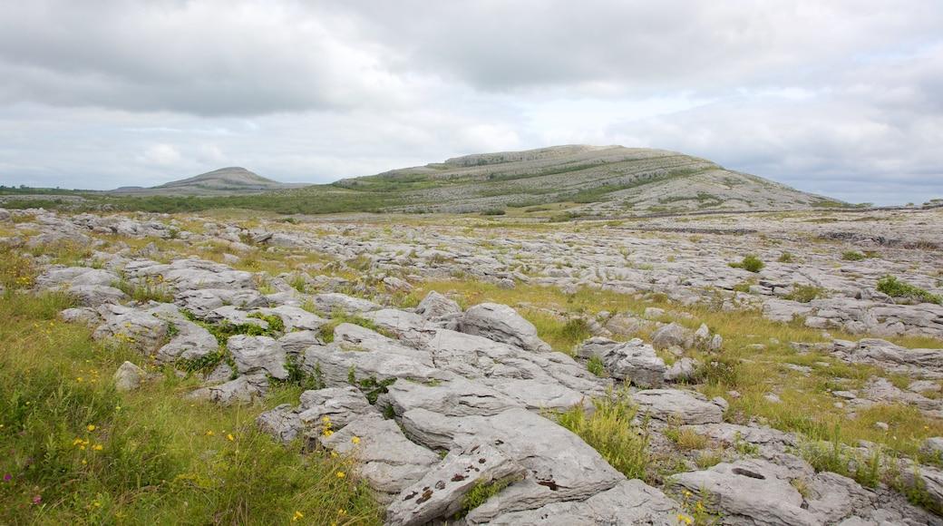 The Burren das einen ruhige Szenerie