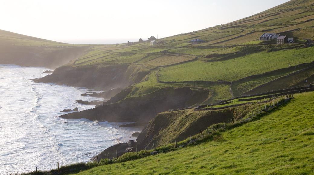 Dunmore Head showing farmland, general coastal views and rugged coastline