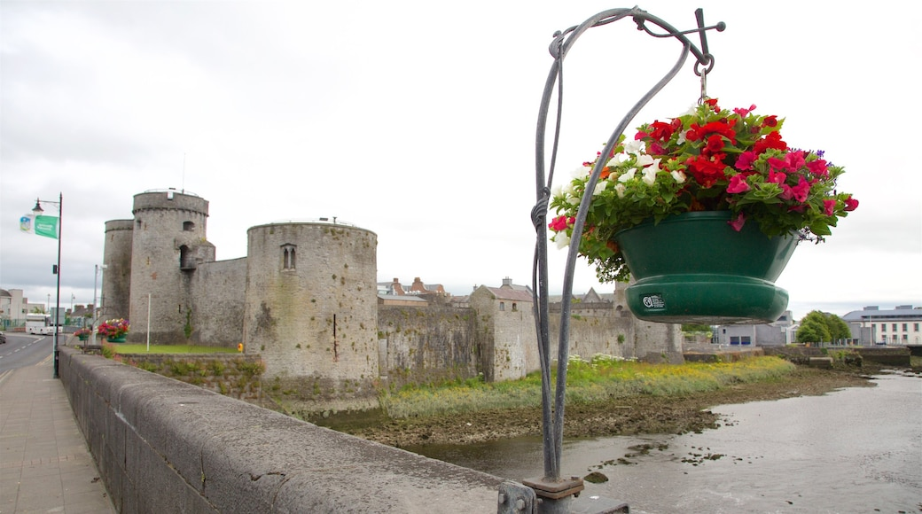 Limerick showing flowers, a river or creek and a castle