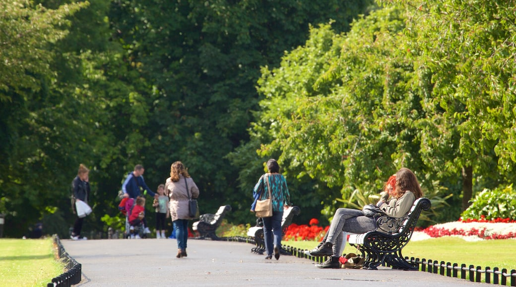 Phoenix Park featuring a garden as well as a small group of people