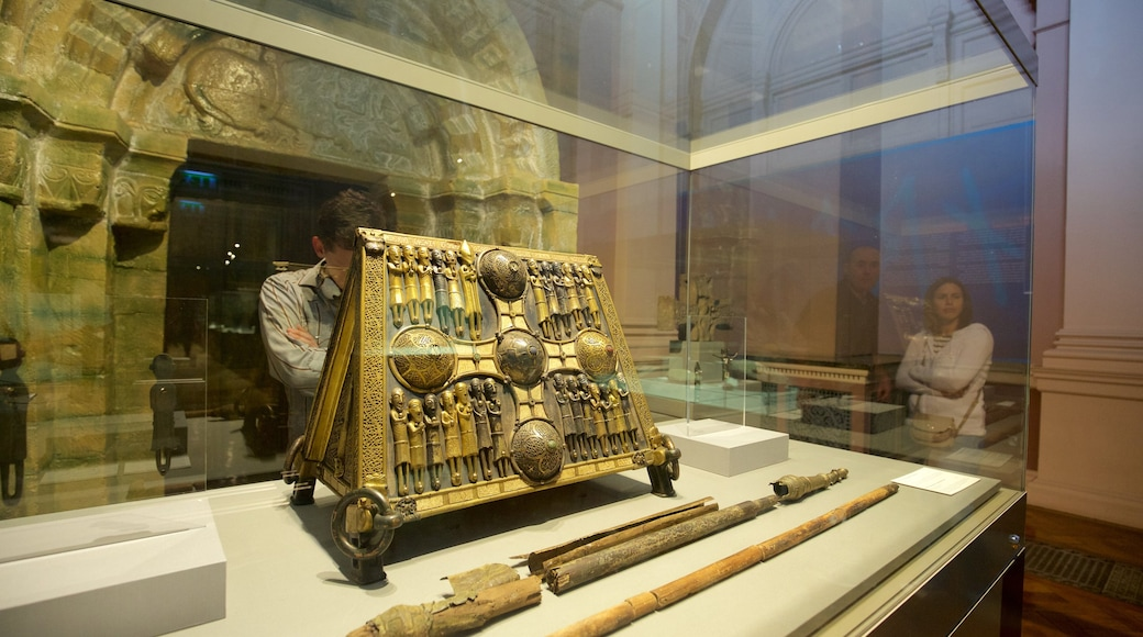 National Museum of Ireland - Archaeology and History which includes heritage elements and interior views as well as an individual male