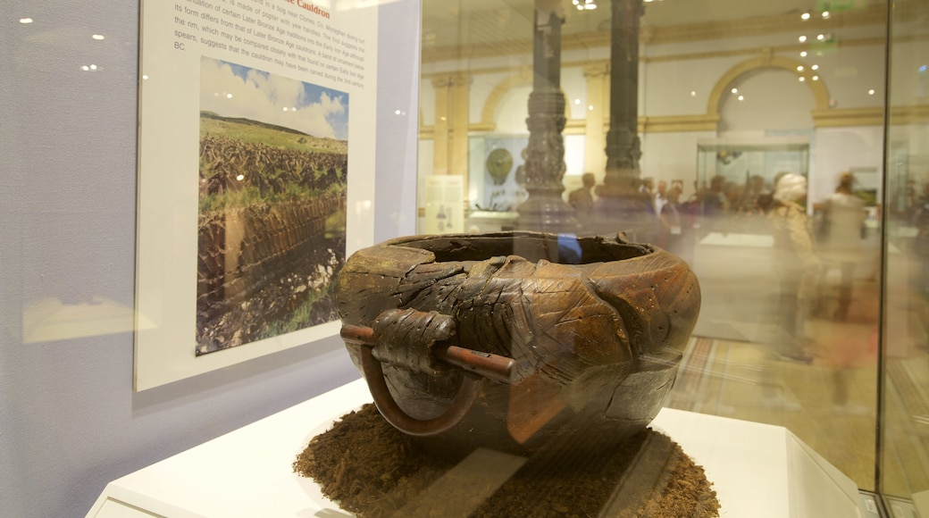 National Museum of Ireland - Archaeology and History featuring heritage elements