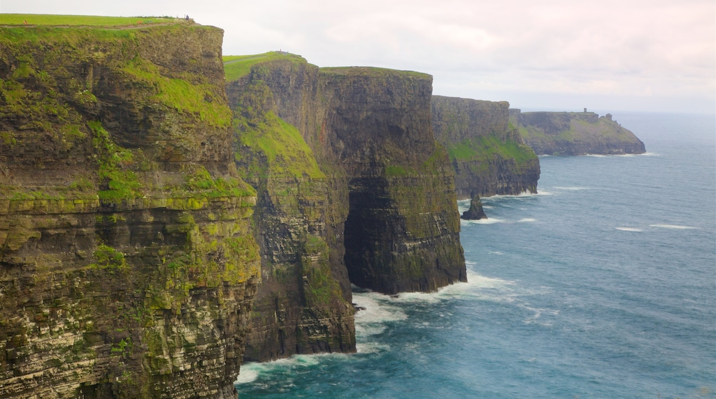 Cliffs of Moher showing rocky coastline and general coastal views