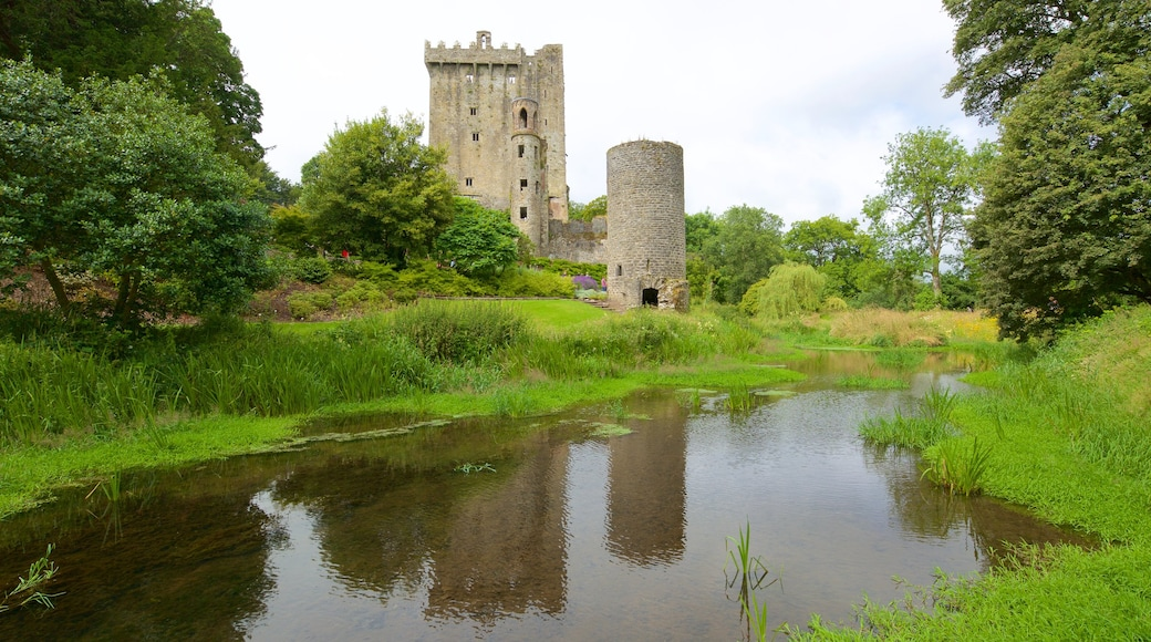 Blarney Castle showing heritage elements, heritage architecture and a castle