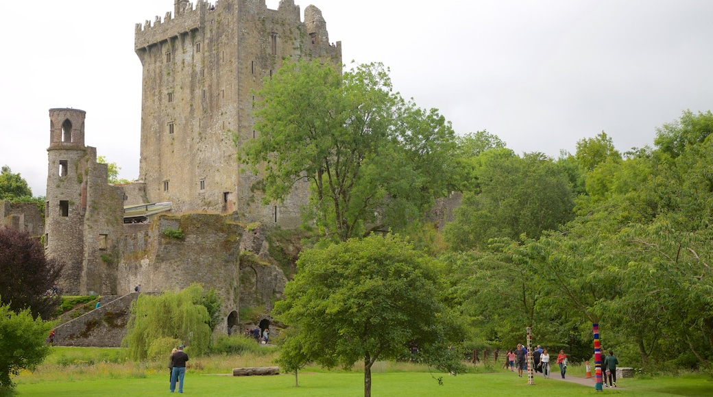 Blarney Castle showing a garden, heritage architecture and château or palace