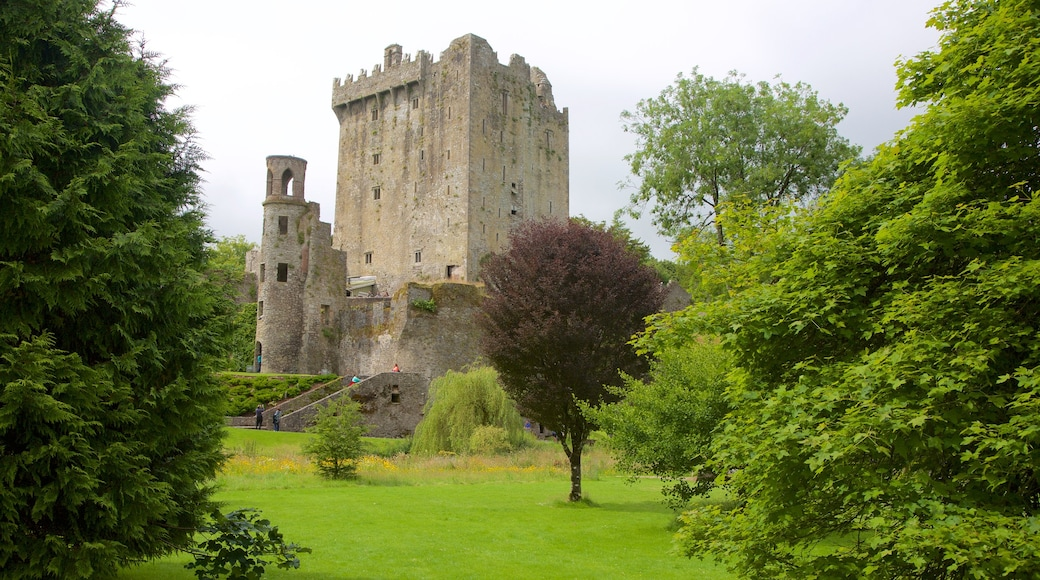 Blarney Castle showing château or palace, heritage architecture and a park
