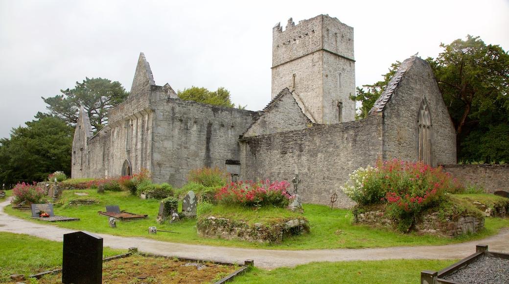 Muckross Abbey mit einem Geschichtliches, historische Architektur und Blumen