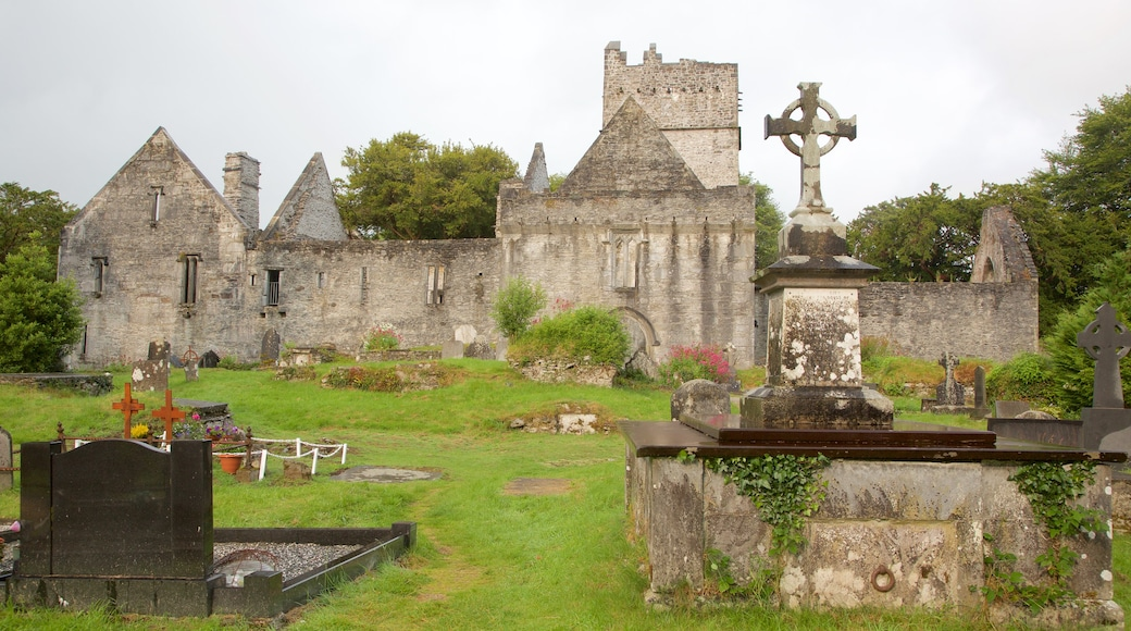 Muckross Abbey featuring château or palace, heritage elements and heritage architecture
