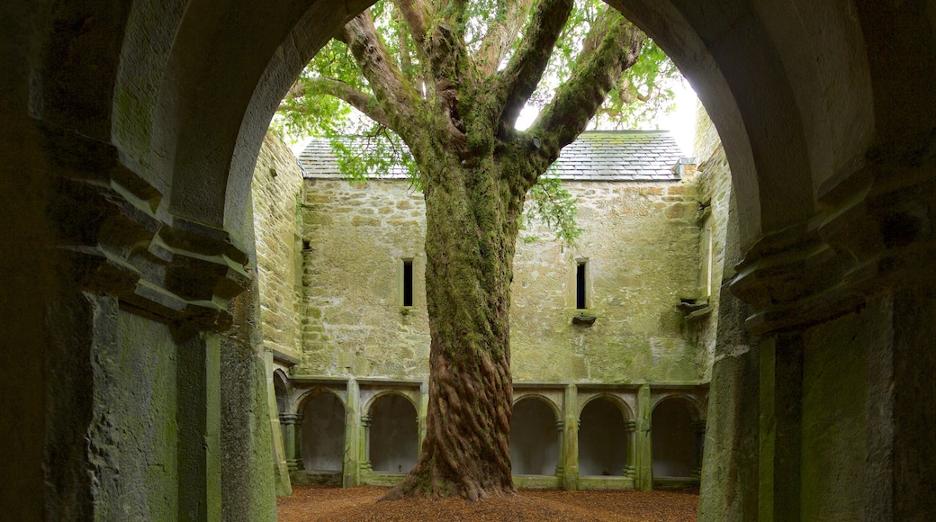 Muckross Abbey featuring heritage architecture, château or palace and heritage elements