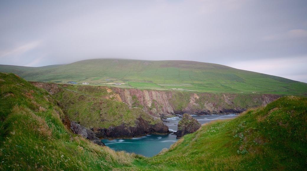 Slea Head showing general coastal views, tranquil scenes and rugged coastline