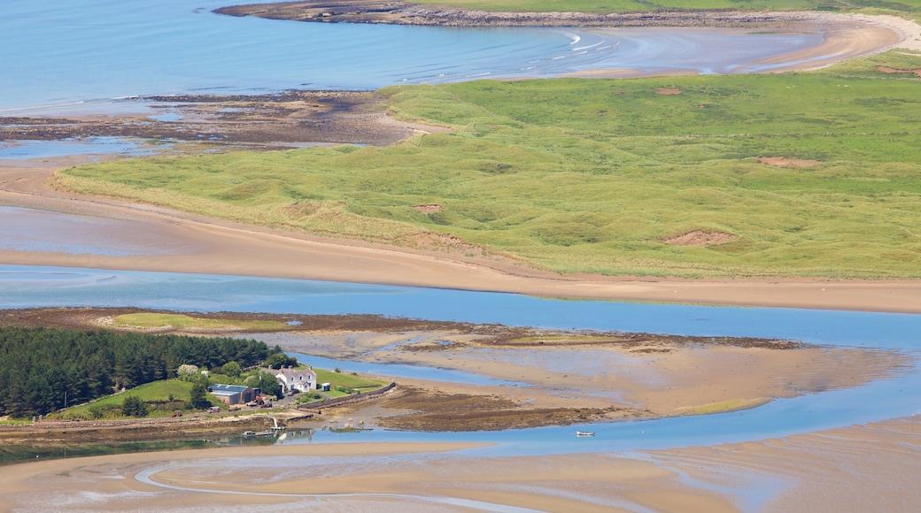 Knocknarea showing general coastal views and a beach