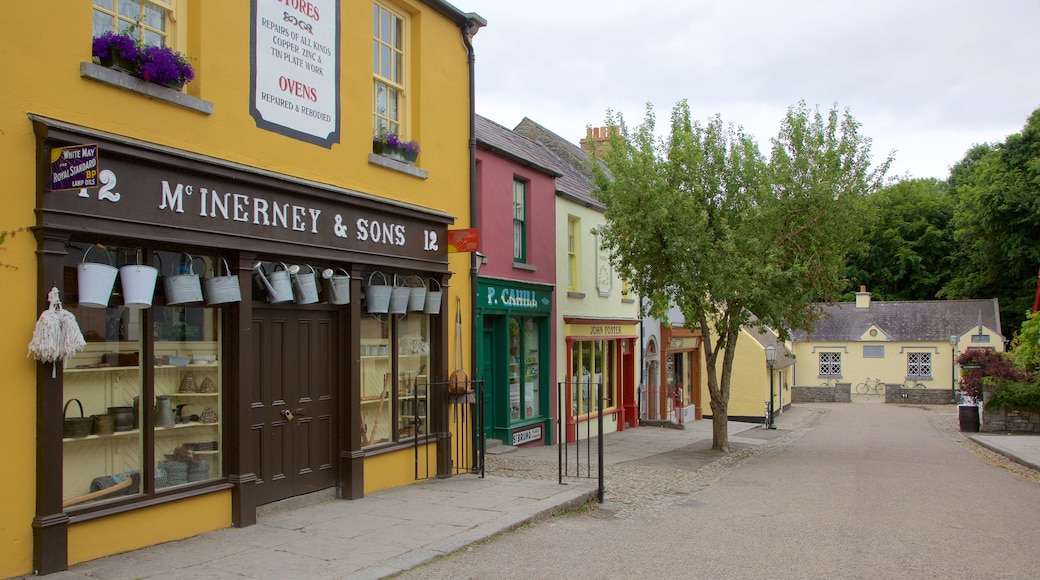 Bunratty Castle and Folk Park showing signage and street scenes