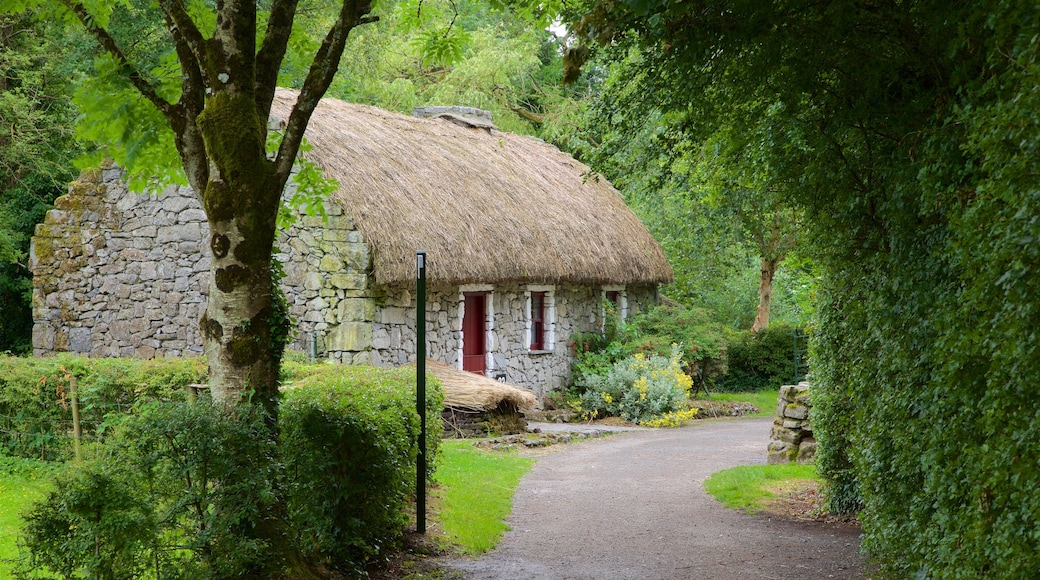 Bunratty Castle and Folk Park which includes heritage elements, a house and heritage architecture