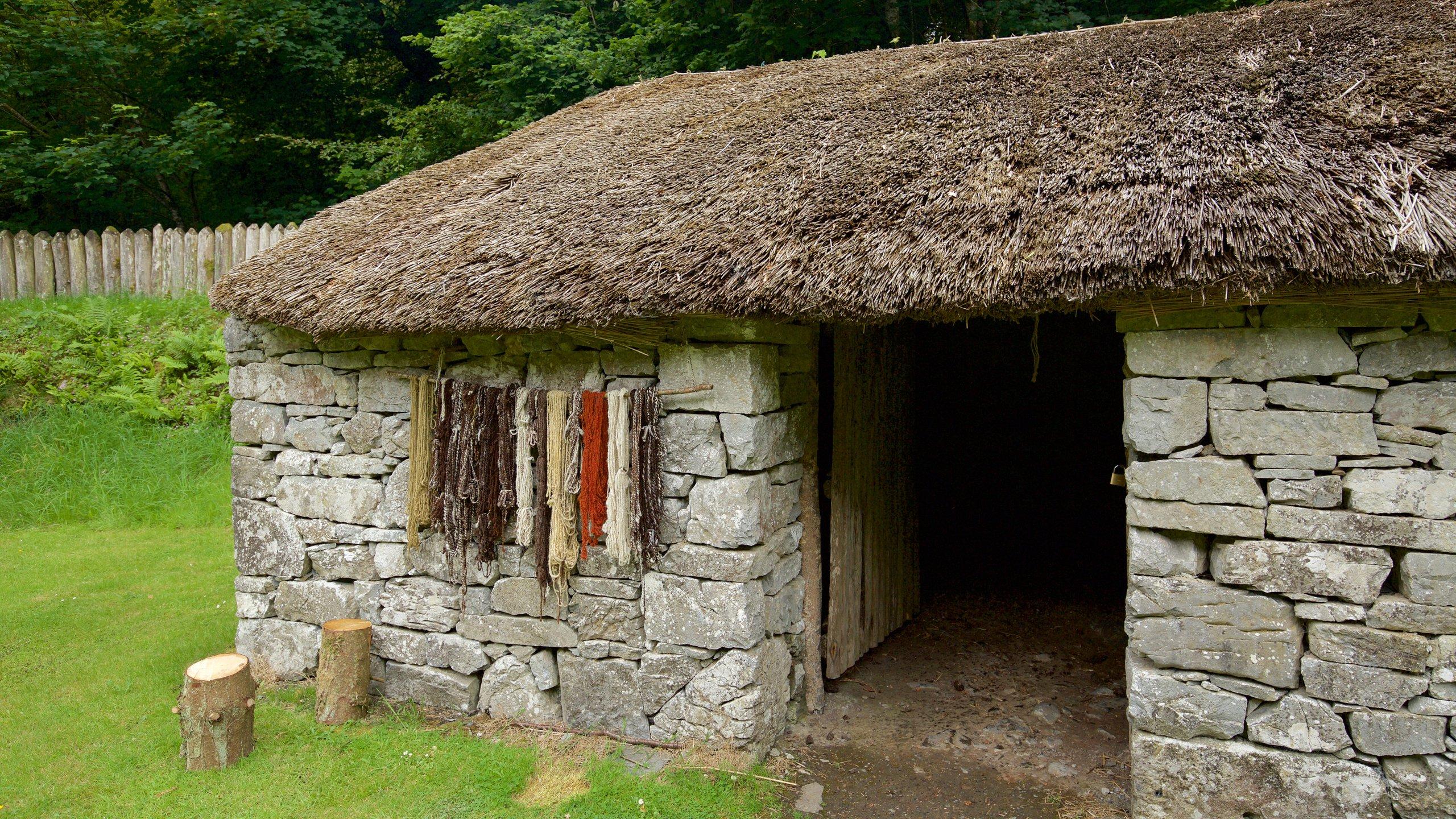 Ennis, Clare (graafschap), Ierland