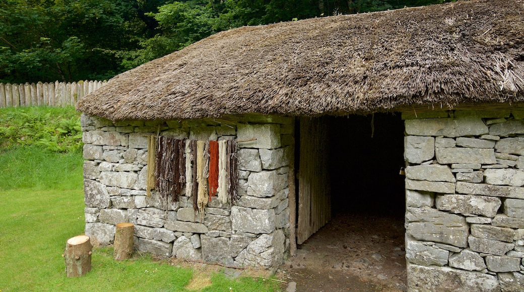 Craggaunowen showing a house, a small town or village and heritage elements
