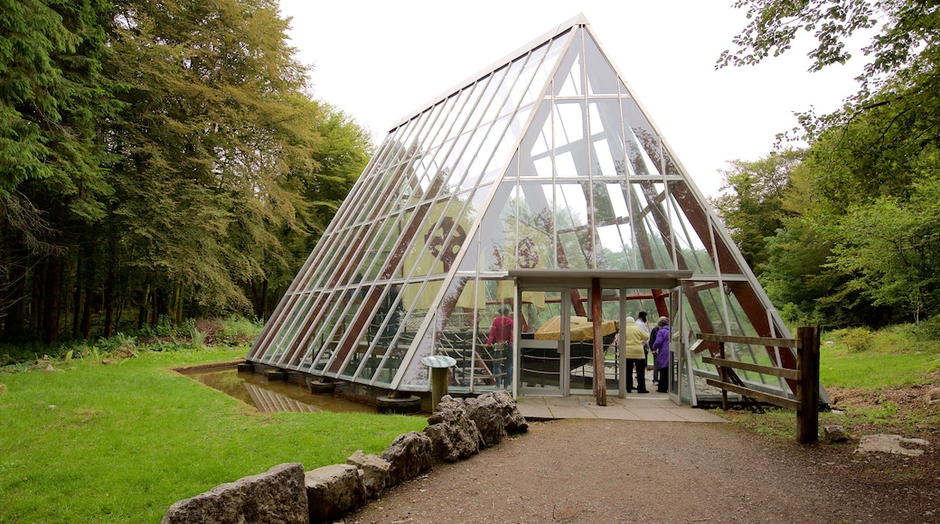 Craggaunowen which includes modern architecture as well as a small group of people