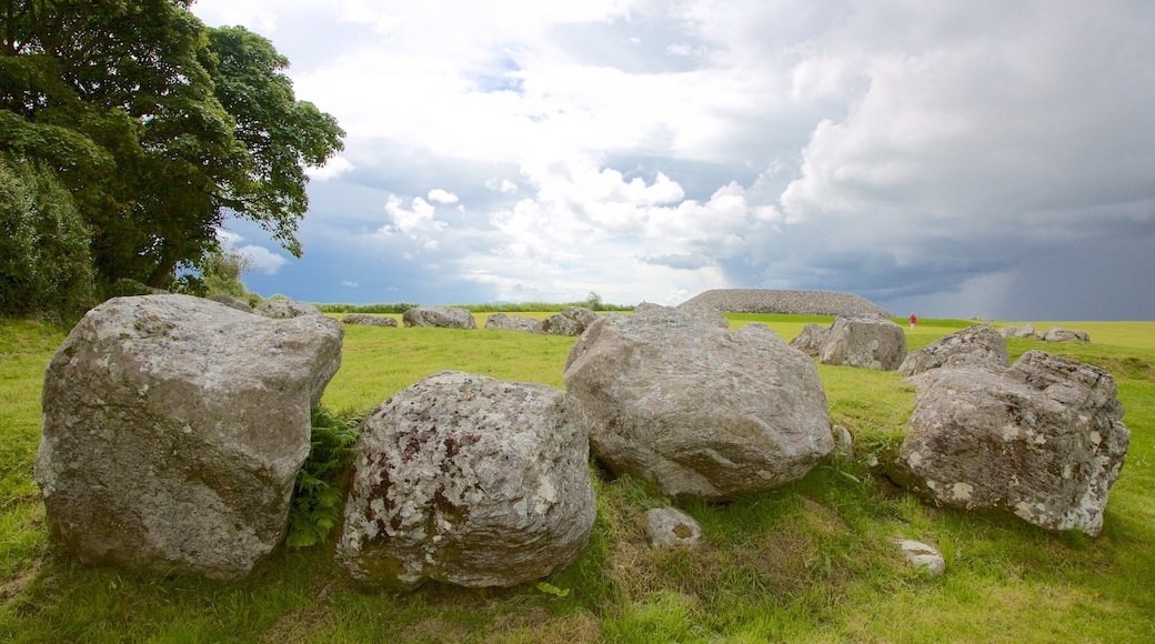 Carrowmore Megalithic Cemetery showing heritage elements and tranquil scenes