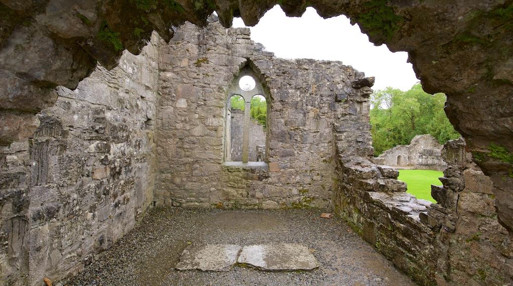 Cong Abbey welches beinhaltet Palast oder Schloss, Geschichtliches und historische Architektur