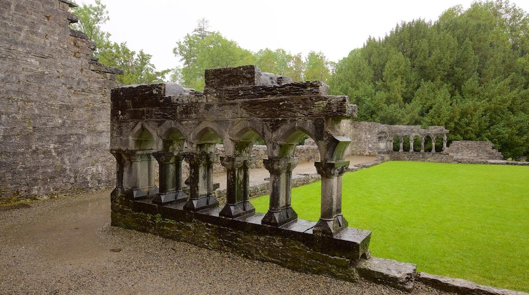 Cong Abbey mit einem Geschichtliches, Gebäuderuinen und historische Architektur