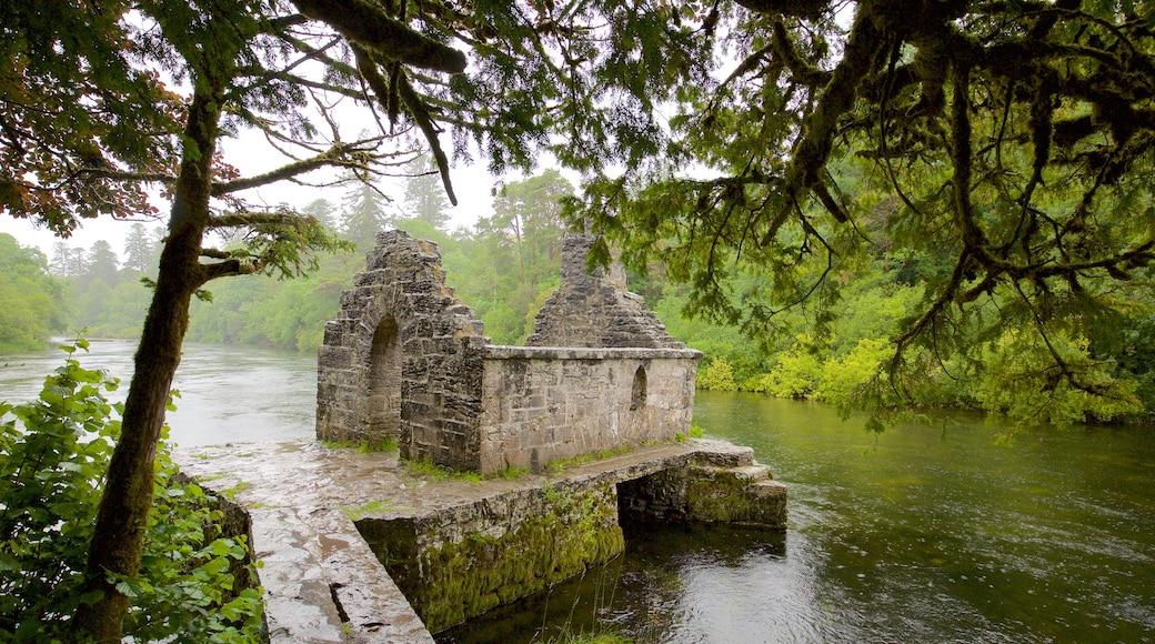 Cong Abbey mit einem Geschichtliches, Gebäuderuinen und Fluss oder Bach