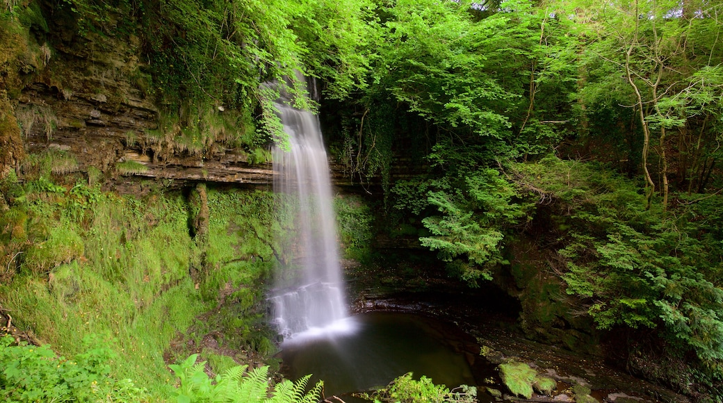 Glencar Waterfall which includes a cascade, tranquil scenes and a pond