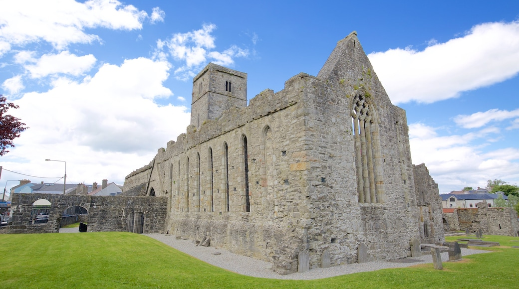 Sligo Abbey featuring a castle, heritage elements and religious elements