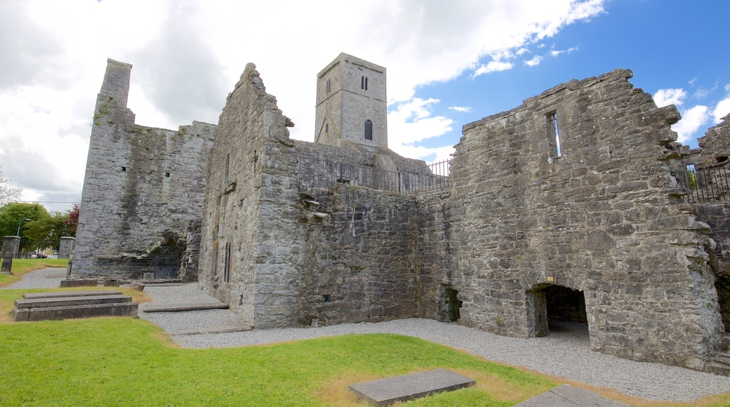 Sligo Abbey featuring building ruins, château or palace and heritage architecture