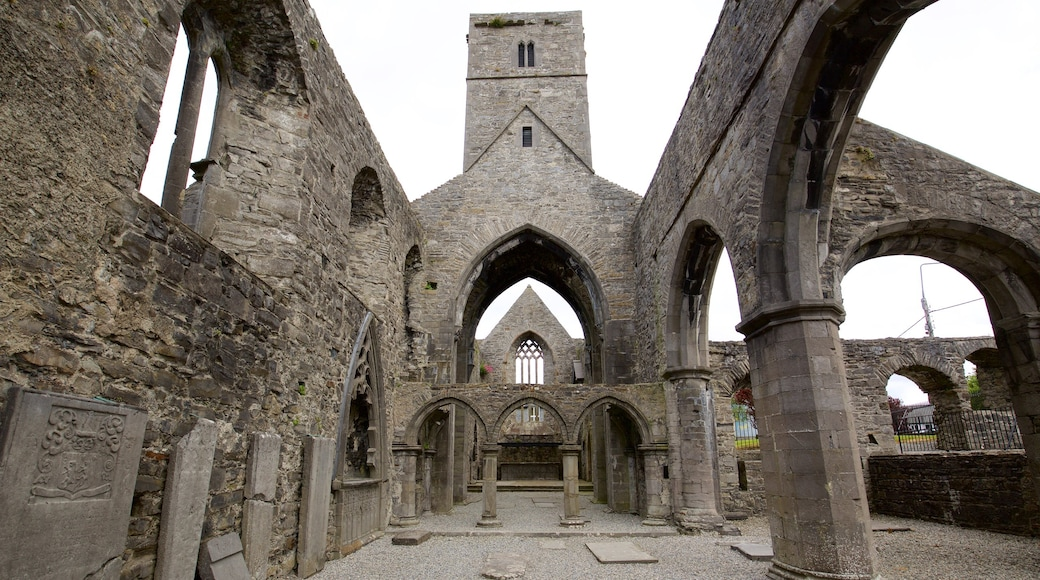 Sligo Abbey which includes a ruin, heritage elements and heritage architecture