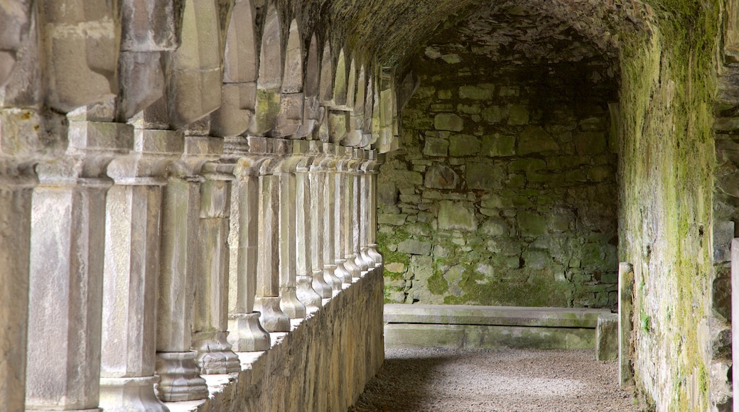 Sligo Abbey which includes heritage elements, interior views and heritage architecture