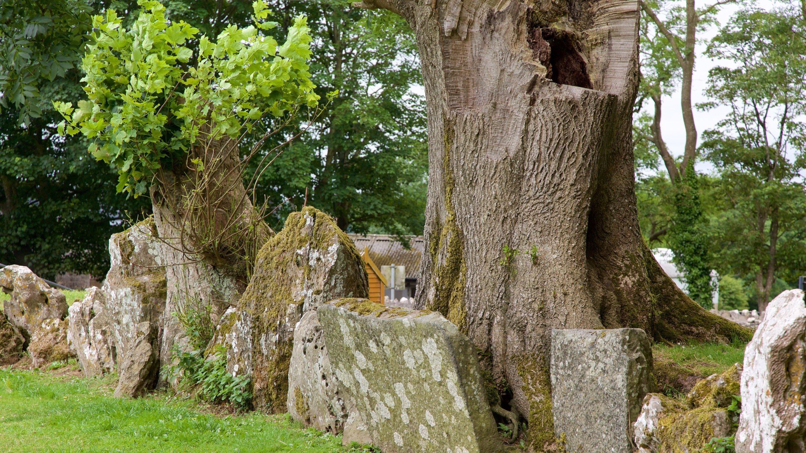 Steinkreis von Grange, Bruff, Limerick Provinz, Irland