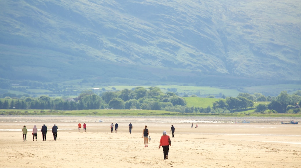 Strandhill Beach which includes a sandy beach and tranquil scenes as well as a small group of people