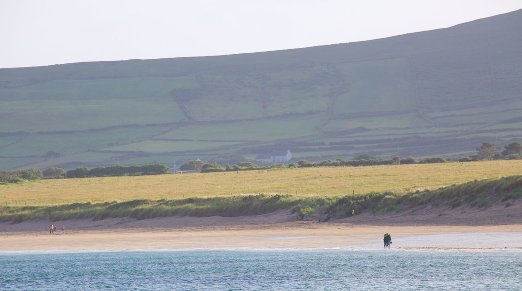 Ventry Beach showing a beach and tranquil scenes