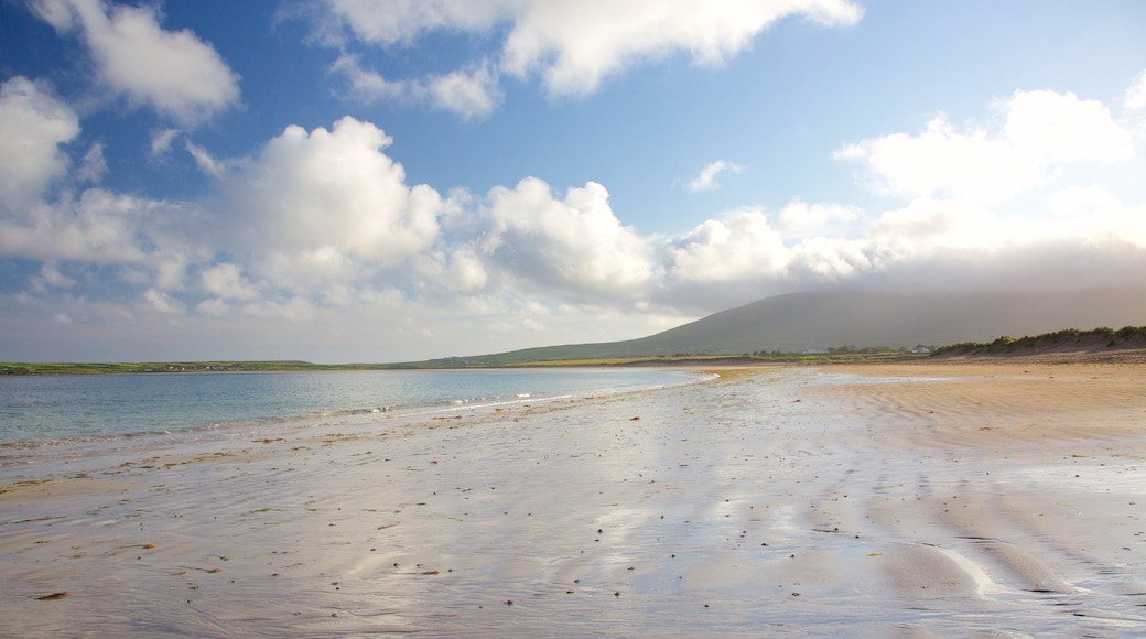 Ventry Beach which includes a beach and tranquil scenes