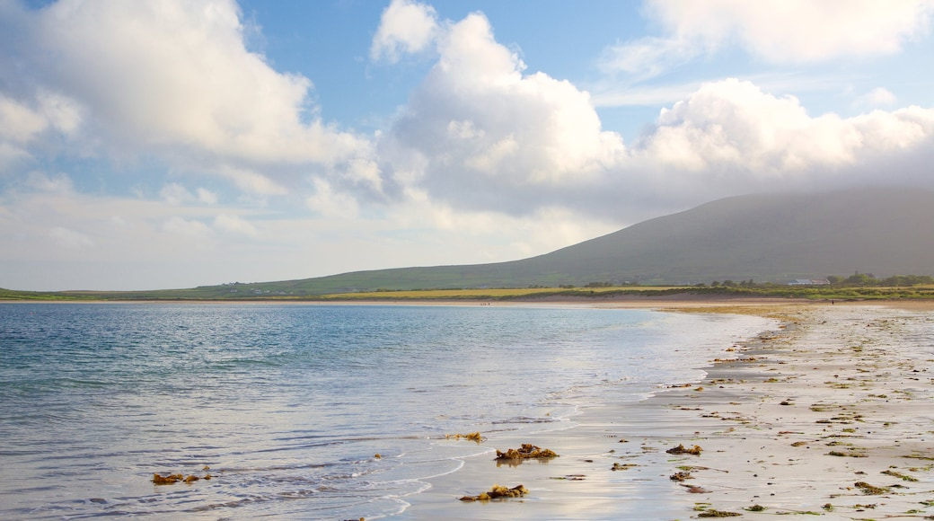 Ventry Beach which includes a beach and general coastal views