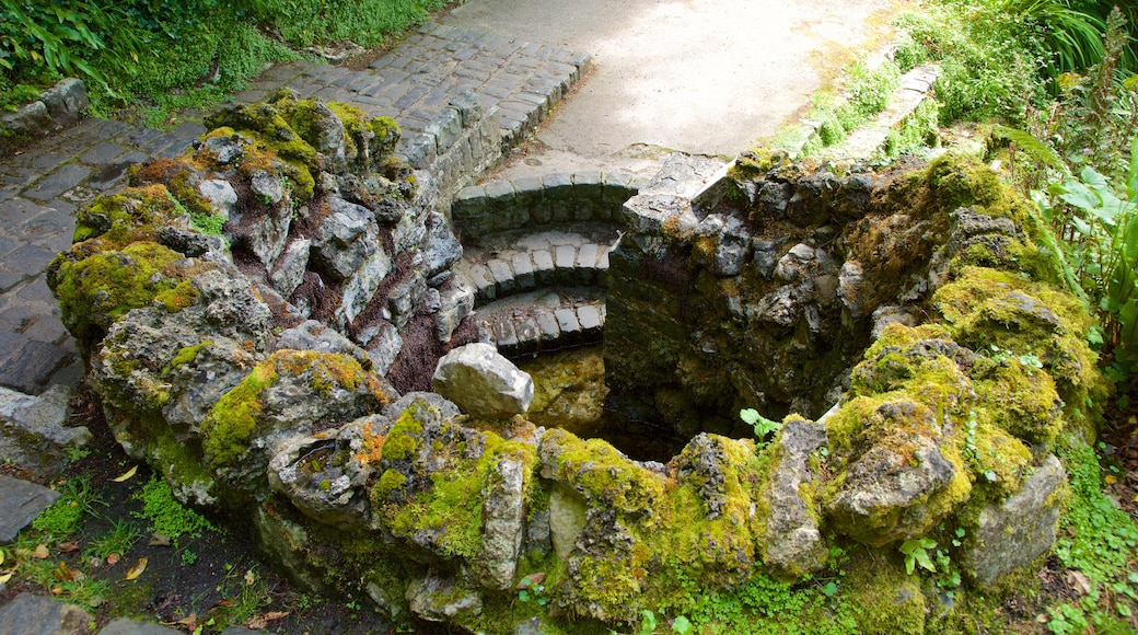 Tobernalt Holy Well showing heritage elements, religious aspects and a ruin